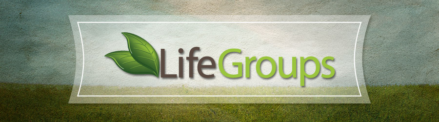 Image result for life groups